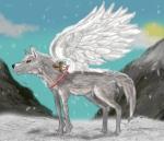 Seduco hero wingwolf