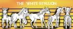 White Stallion truntable